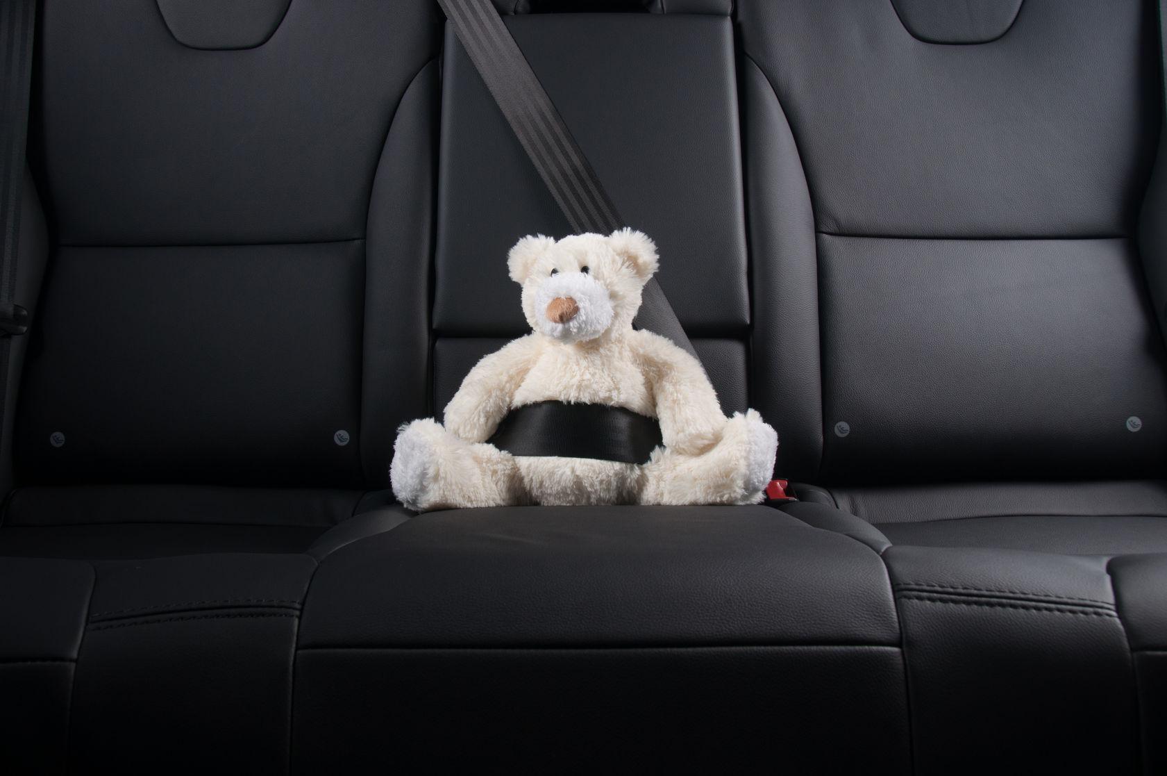 seatbelt auto accident